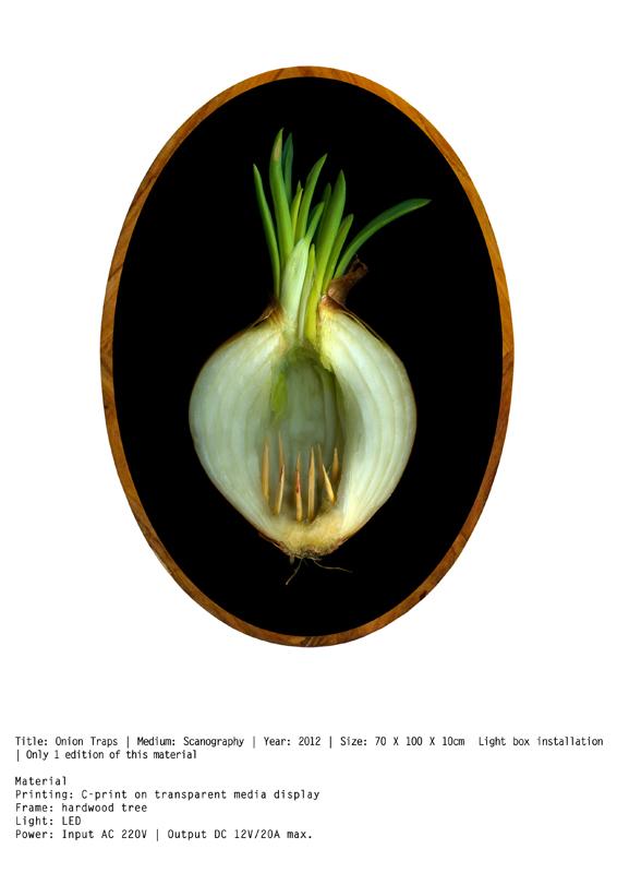 Onion Trap