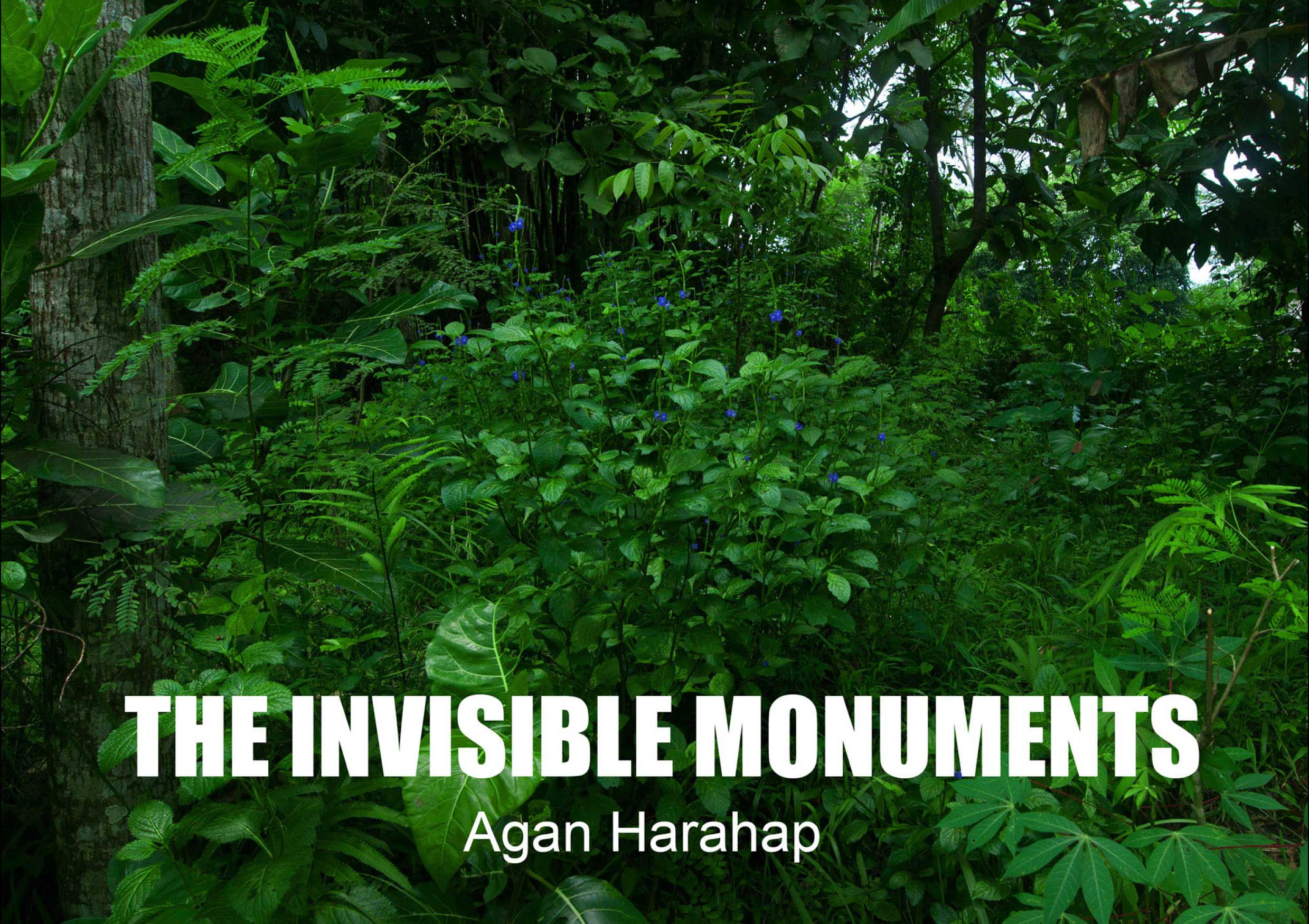 The Invisible Monuments-1