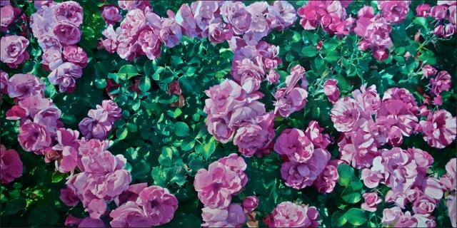 rose_90