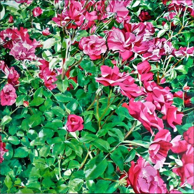 rose_92