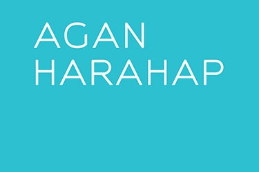 Artist Profile: Agan Harahap